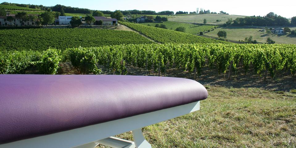 Table Mobercas dans les vignes